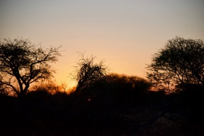 Sunset on the Kalahari, while reaching the lodge in the late afternoon