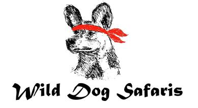 WDS Small Logo