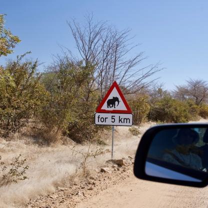 Mind the Elephants... for 5Km!